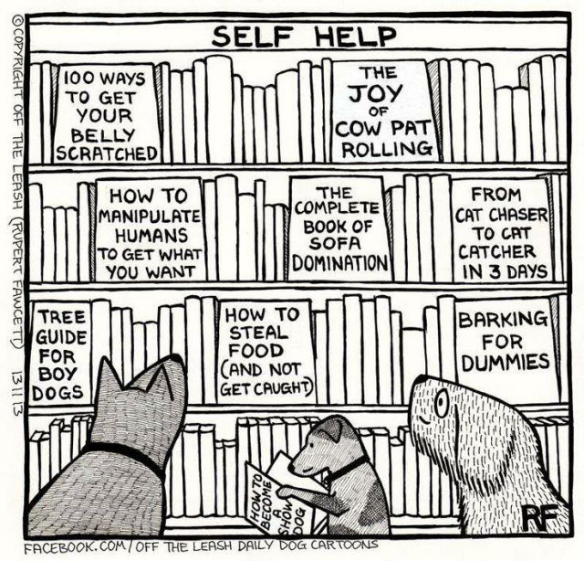 dog self help books.png