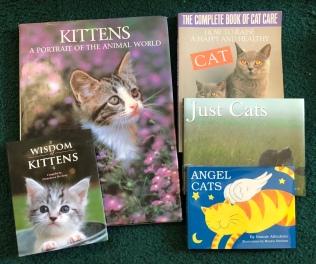kitten collection