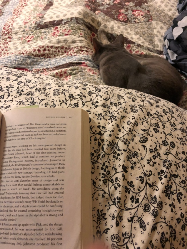 Blue reading companion.jpg