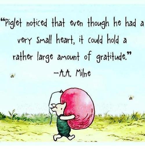 piglet noticed gratitude.png